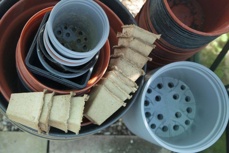 Sklepy ogrodnicze online – dlaczego warto robić w nich zakupy?